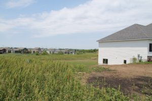 Future Greenspace at Black Creek Ridge