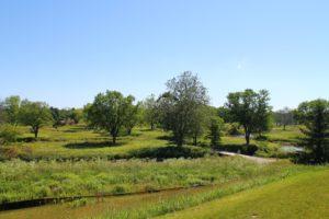Macatawa Greenspace View