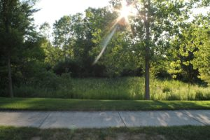 One of the Greenspaces at Cobblestone