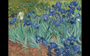 Irises Vincent Van Gogh-min
