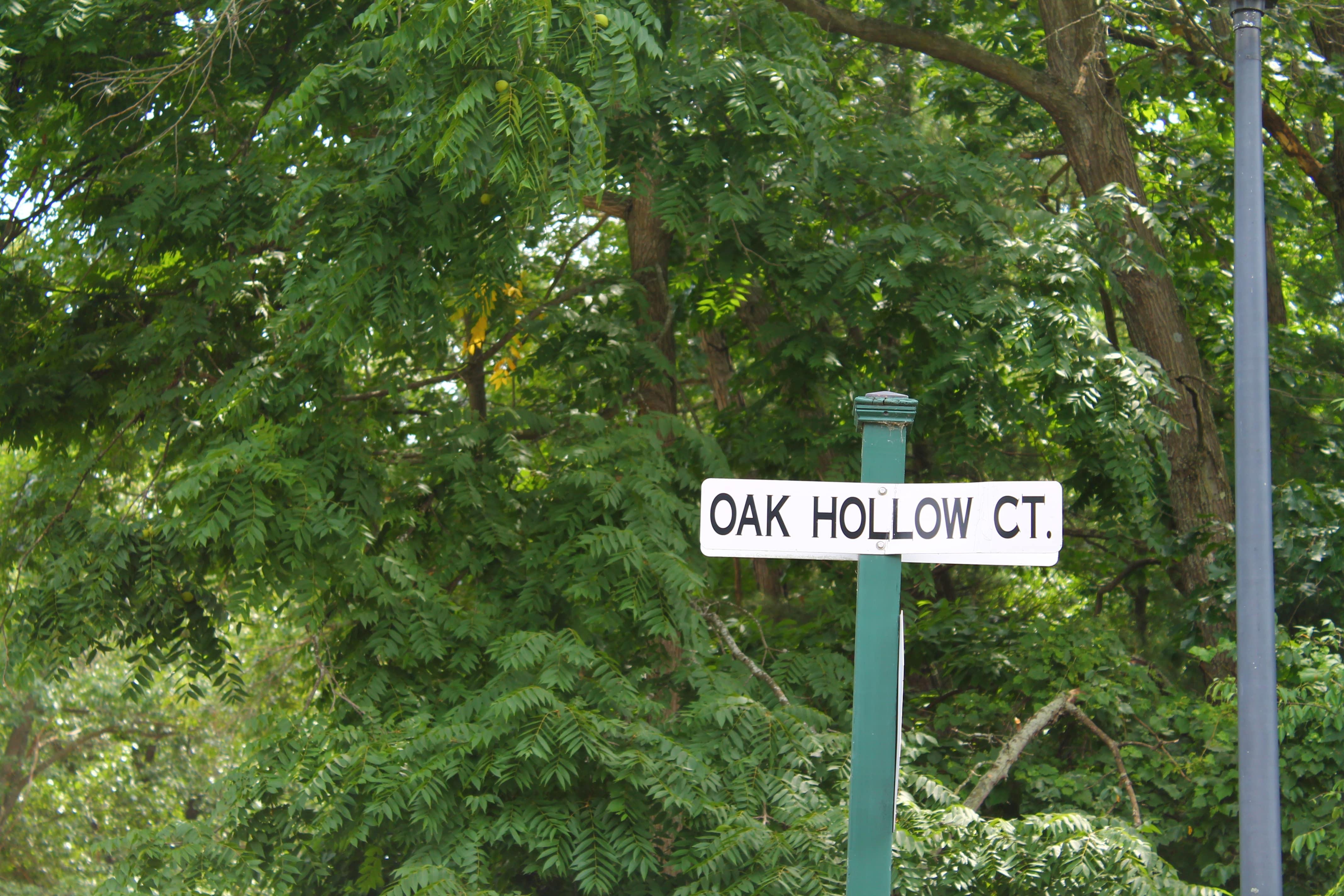 Street Sign just outside Olde Oak